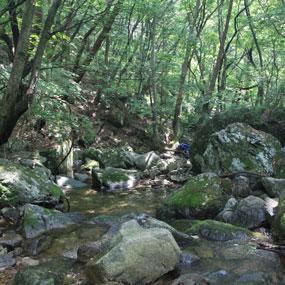 운달계곡여행정보 http://www.travelkor.com