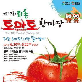 퇴촌토마토축제 여행정보 상세소개