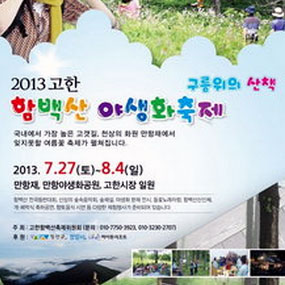 백두대간 함백산 야생화축제 여행정보 상세소개