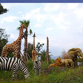 아프리카박물관여행정보 http://www.travelkor.com