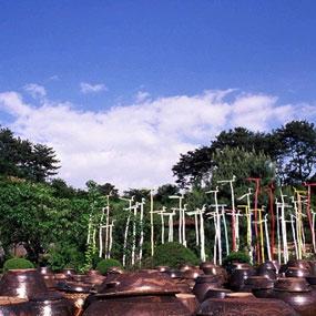 충남 서천식물예술원여행정보 http://www.travelkor.com