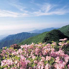 소백산 국립공원여행정보 http://www.travelkor.com