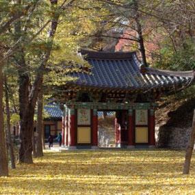 구미 금오산여행정보 http://www.travelkor.com