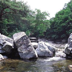삼계리 계곡여행정보 http://www.travelkor.com