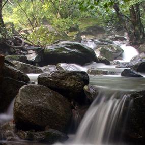 유명산계곡여행정보 http://www.travelkor.com
