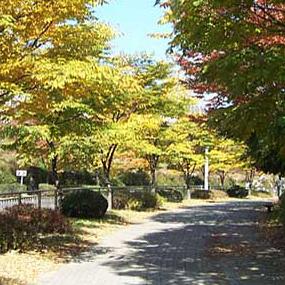 수리산여행정보 http://www.travelkor.com