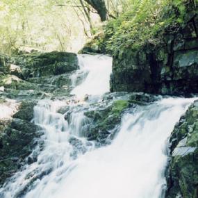 태기산여행정보 http://www.travelkor.com