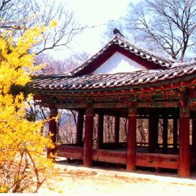 청룡포여행정보 http://www.travelkor.com