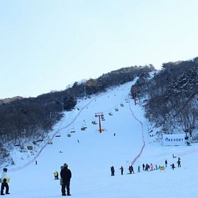 사조리조트 스키장 여행정보 상세소개