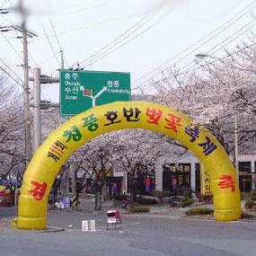 청풍호반 벚꽃축제여행정보 http://www.travelkor.com