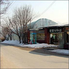 분재박물관여행정보 http://www.travelkor.com
