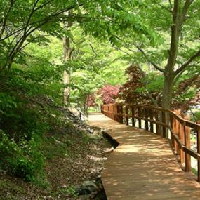 성주산 휴양림여행정보 http://www.travelkor.com