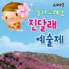 고려 산진달래 예술제 여행정보 상세소개