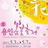 봄꽃축제 여행정보 상세소개