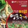 강원홍천 인삼축제 여행정보 상세소개
