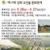 고인돌 축제 여행정보 상세소개