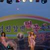 섬진강 변벚꽃축제 여행정보 상세소개