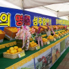성주 참외축제 여행정보 상세소개