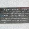 오전 약수축제 여행정보 상세소개