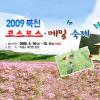 북천 메밀꽃,코스모스 축제 여행정보 상세소개