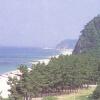 등명해수욕장 여행정보 상세소개