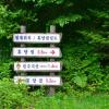 민주지산자연휴양림 여행정보 상세소개